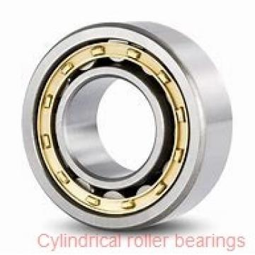 70 mm x 125 mm x 31 mm  NACHI NJ 2214 E cylindrical roller bearings