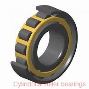45 mm x 75 mm x 40 mm  NACHI E5009NR cylindrical roller bearings